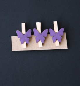 Deco Butterfly Pegs