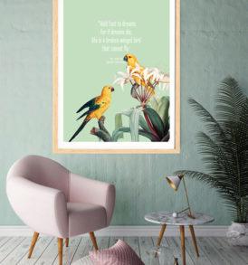 birds and dreams